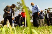 Por el Día Mundial de la Limpieza plantaron árboles de especies nativas